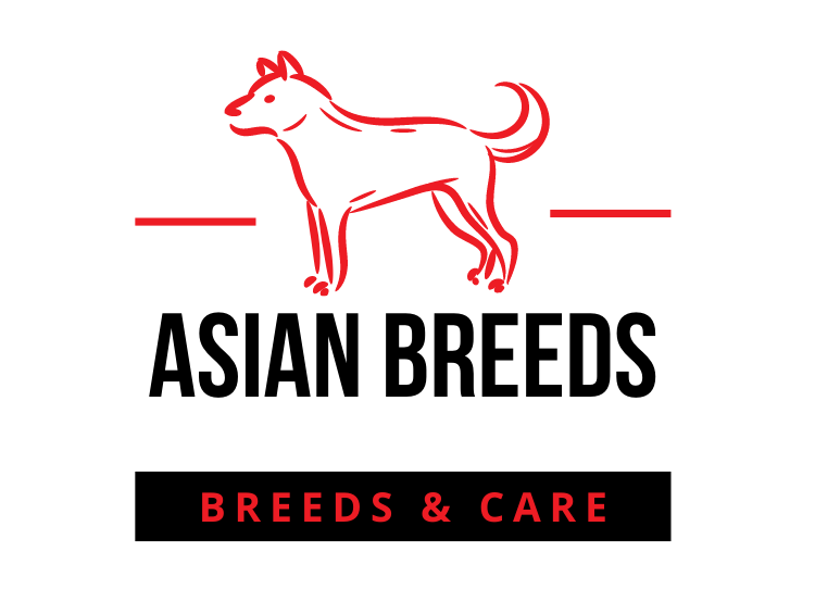 Asian Dog Breeds